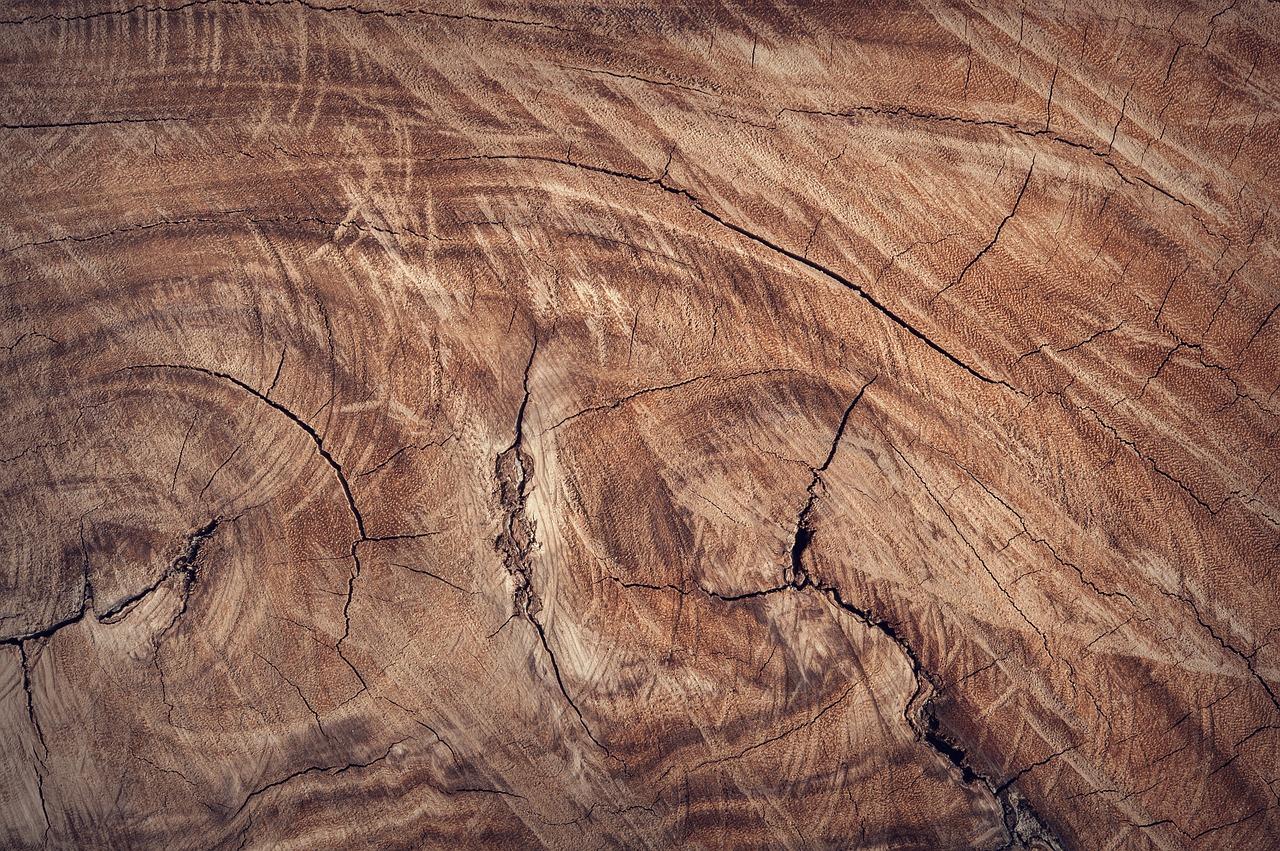 Jakich farb nie używać do drewna?